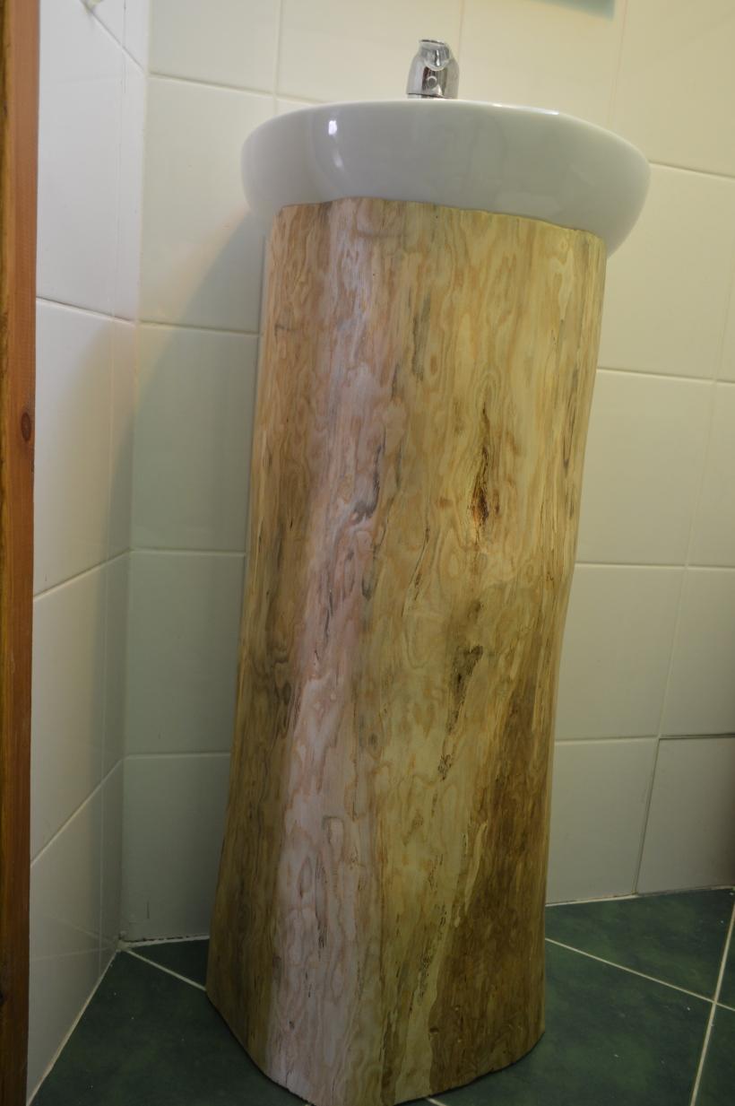 umywalka na pniu jesionowym
