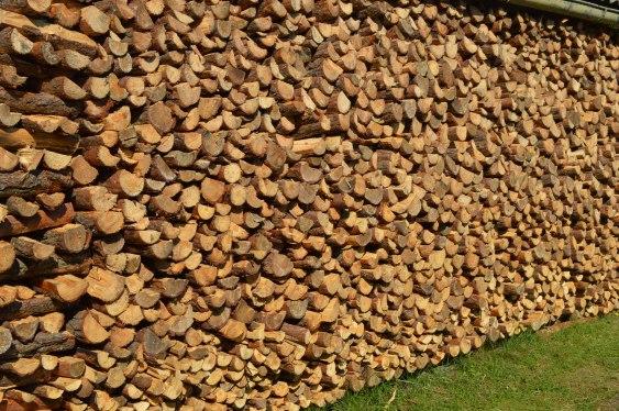 ściana drewna